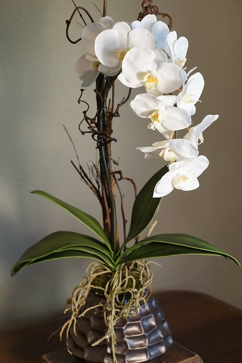 Silk white orchid in bronze contemporary container