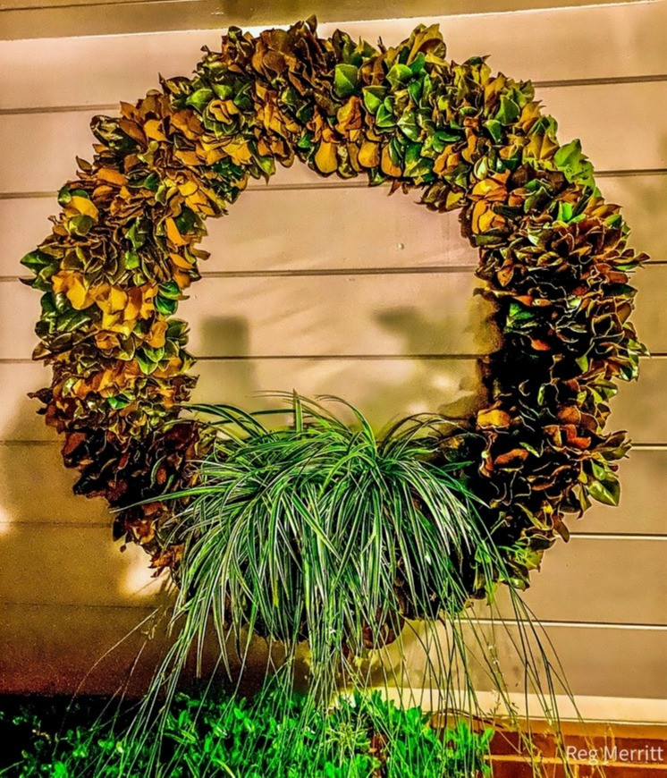 Magnolia wreath with spider waterfall.jp