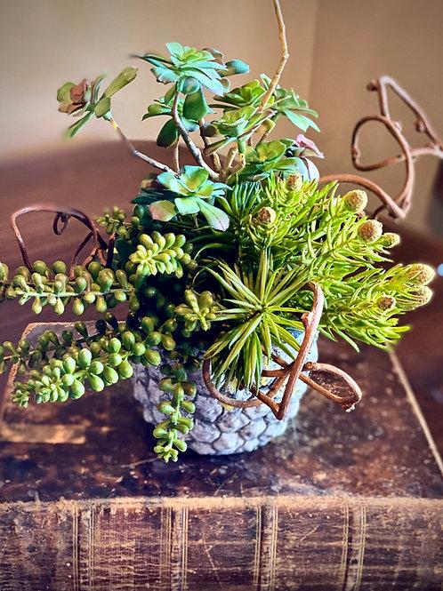 Faux succulents with kiwi vine accents in textural concrete container.