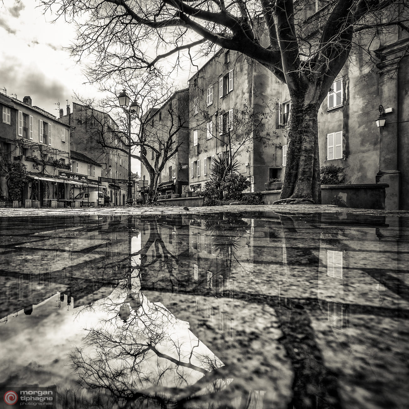 Mirror puddle