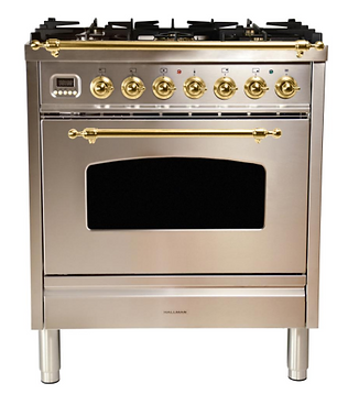 Silver Chrome Gold Oven