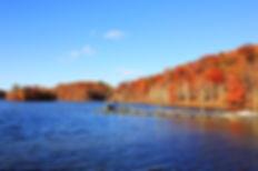 Lake Needwood.jpg