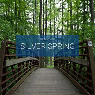 Discover silver spring.jpg