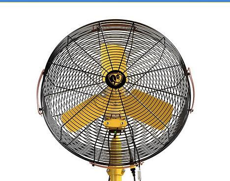 BAF whole fan.jpg