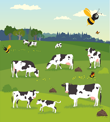 cows-grazing-illustration-decorated-2.pn