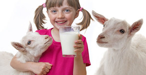 Nutritional Facts About Goat Milk