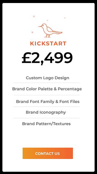 Branding & Logo Packages