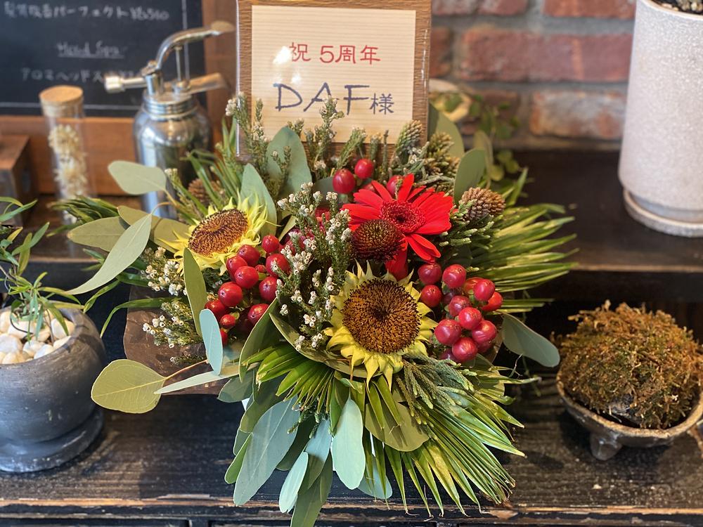 湘南 茅ヶ崎 美容室DAF