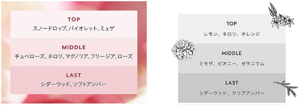 ルベル SEE/SAW 香り