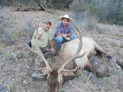 Andrew Pedroncelli Elk