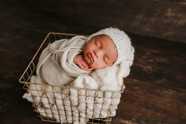 lake odessa newborn photographer