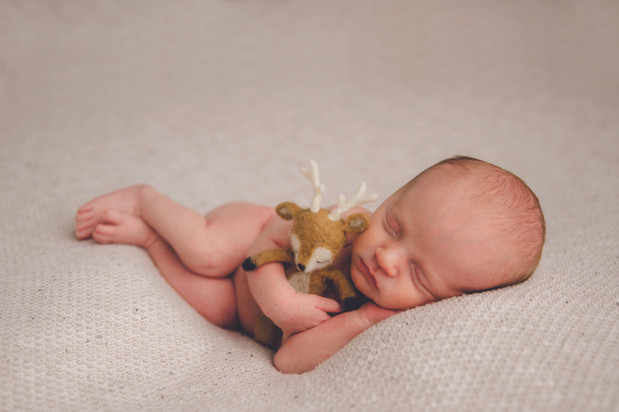 mid michigan newborn photographer