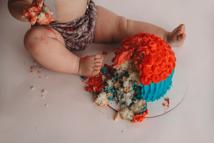 michigan cake smash photographer