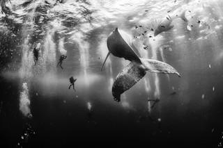 Un Mexicano destacado - National Geographic Traveler Photo 2015