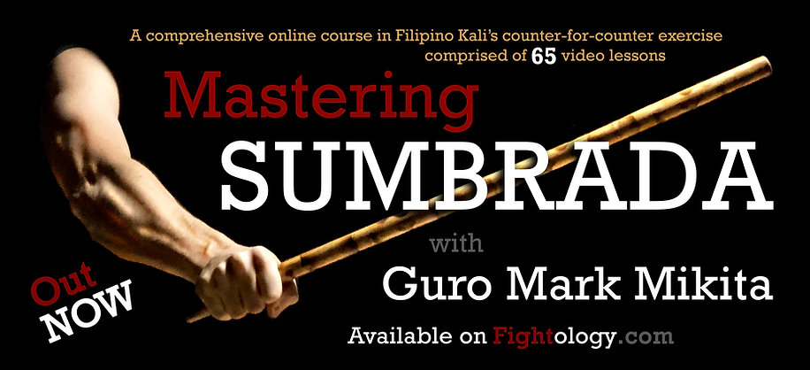 Mastering SUMBRADA SALES icon.jpg