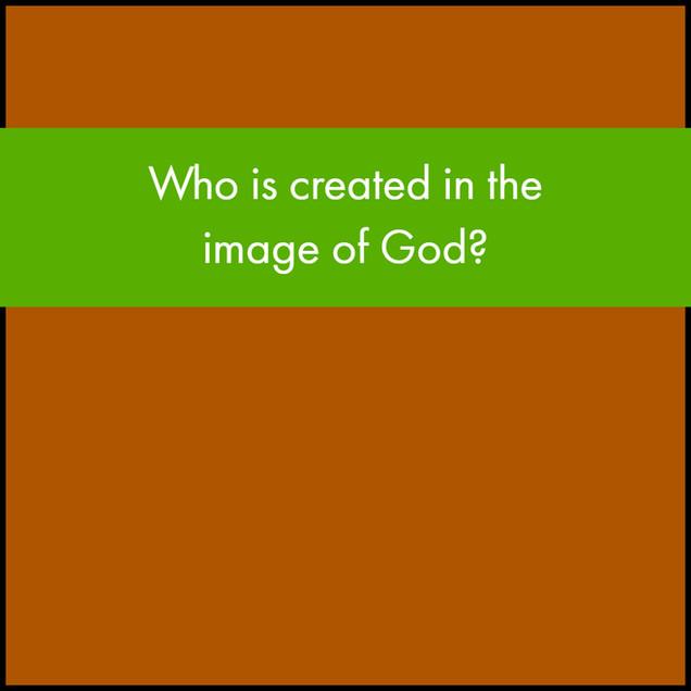 P3 Image.jpg