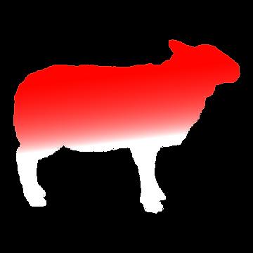 lamb-bloody.tiff