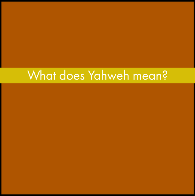 Y1Q2 Yellow (11).png