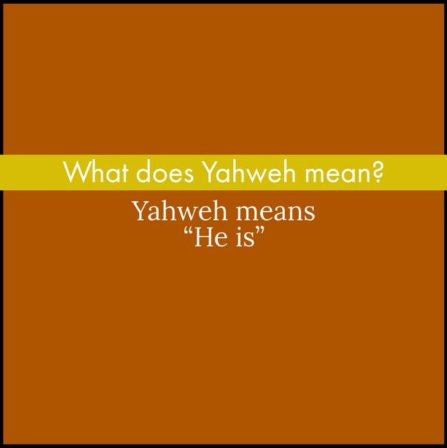 Y1Q2 Yellow (10).png