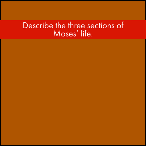 Y1Q3 Red (6).png