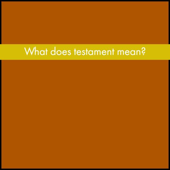 P1 Bible Yellow Q.jpg