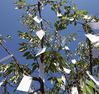 Yoko Ono 'Wish Tree' 1996 - Copy.jpg