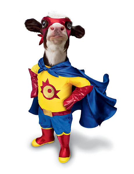 120418CFA_SuperHero_Calf_type_G300.jpg
