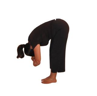 16. Uttana / Standing Forward Fold