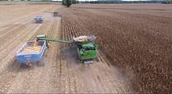 harvest%20picture%201_edited