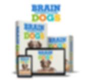 brain training for dogs - eliminate bad