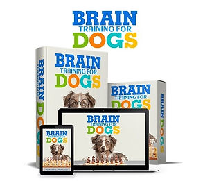 brain training for dogs - eliminate bad