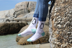 Socks hatched in Cape Town, SA!