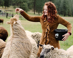 Katrina and the Spoiled Sheep-6.jpg