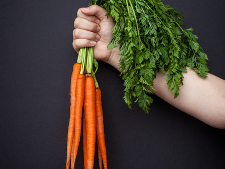 "Do Carrots Scream? Vegetables may not be as silent as we think and may ""talk"" to each other"