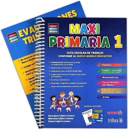 MAXIPRIMARIA 1