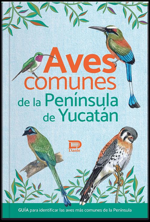 AVES COMUNES DE LA PENÍNSULA DE YUCATAN