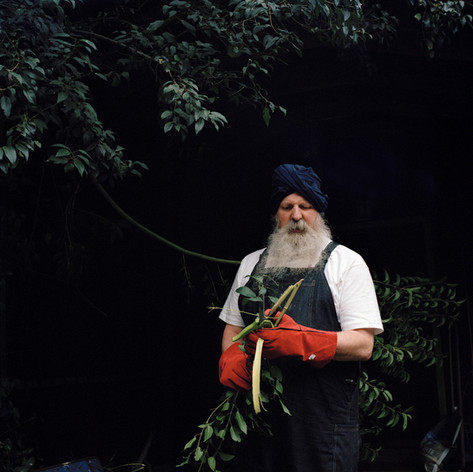 The Path of the Sikhs