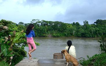 Paisaje Villa Gonzalo, Amazonas.jpg