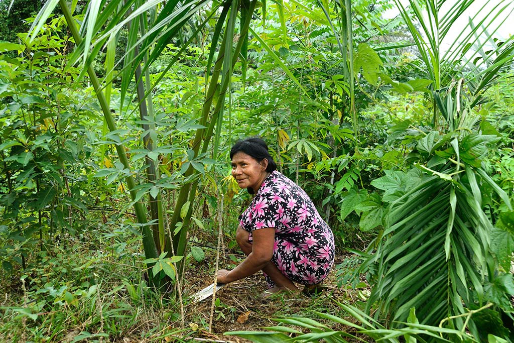 Trabajos comunitarios Mujeres plantando