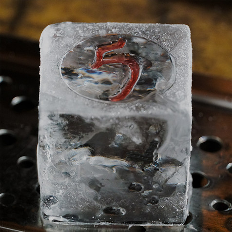 5-Restaurant-ice-cube.jpg