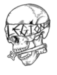legion-training-camp-skull-logo