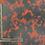 Thumbnail: Red Lightning