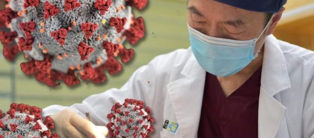 Pandemia e professioni