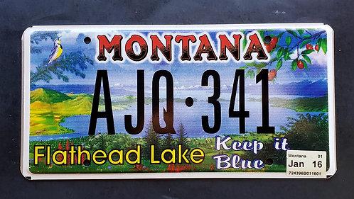 MT Montana - Flathesd Lake - Keep it Blue - AJQ341