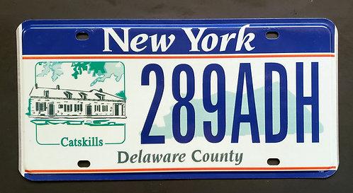 NY Catskill - Delaware County - 289ADH