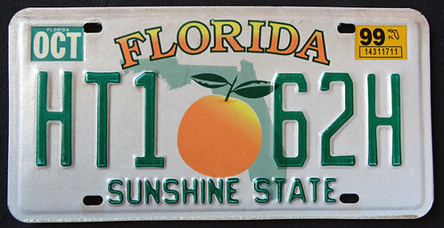 FL Sunshine State - Orange - Green State Map