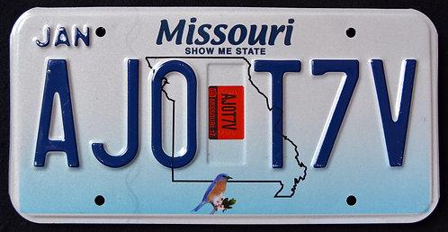 MO Show Me State - Wildlife Bird - AJO T7V