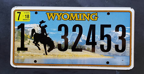 WY Wyomimg - Bronco Cowboy Horse Snake River Mountains - 132453