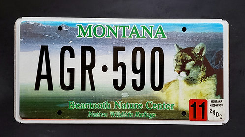 MT Wildlife Mountain Lion - Cougar - Beartooth - AGR 590