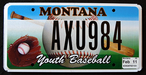 MT Youth Baseball